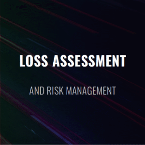 Loss Assessment
